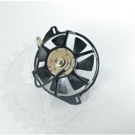 Fan Shineray XY300STE